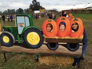 7-pumpkin-kitsch-560x420